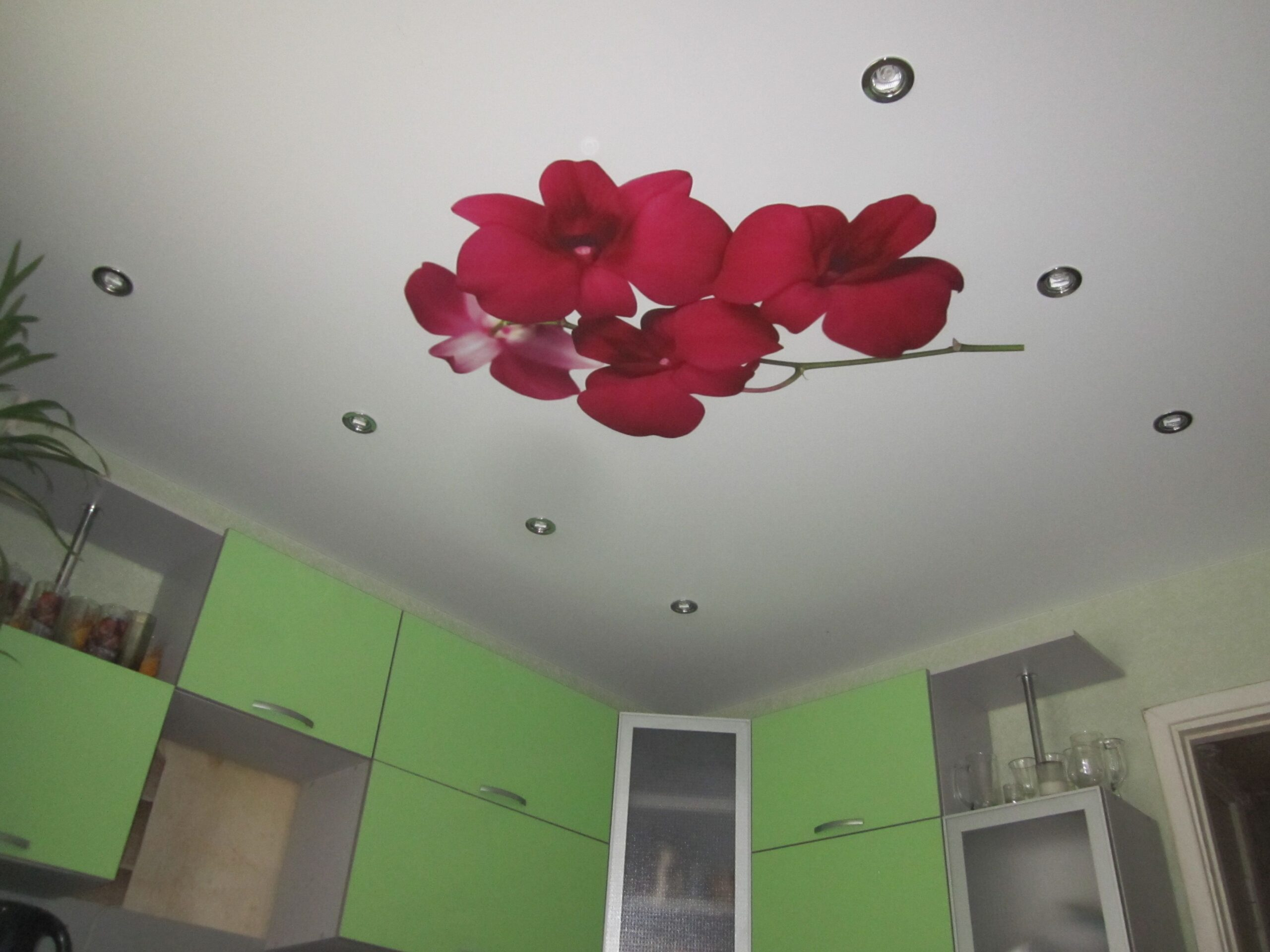 цветы на натяжном потолке на кухне
